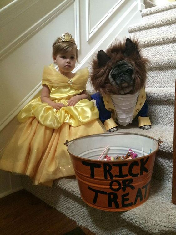 fantasia halloween infantil bela fera